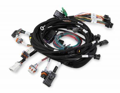 Holley EFI Accessories  - Wiring Harnesses - Holley - Holley 558-108 - Ford Modular 2V & 4V Main Harness
