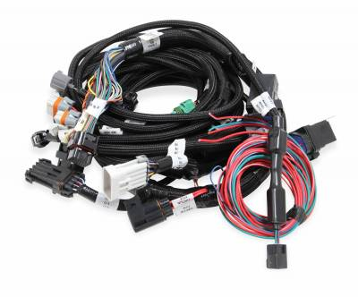 Holley EFI Accessories  - Wiring Harnesses - Holley - Holley 558-113 - Ford Modular 2V & 4V Main Harness w/Smart Coils